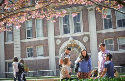 Students on Revson Plaza under cherry trees