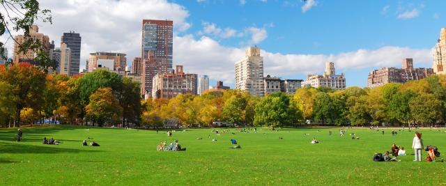 People sit on a green lawn in Central Park.
