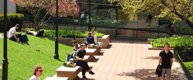 Students studying on benches in spring